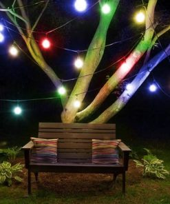 Colored Festoon Light Hire Auckland